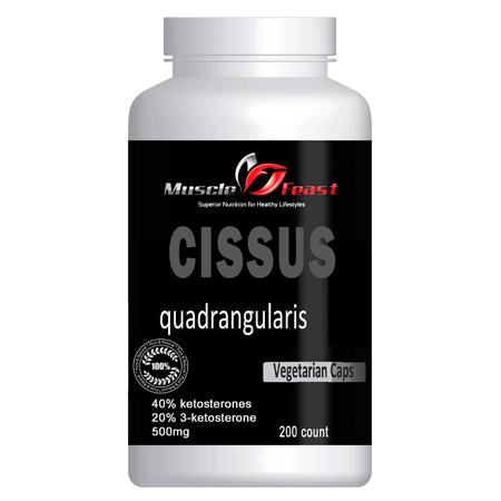 Cissus Quadrangularis Featured