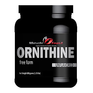 L-Ornithine Featured
