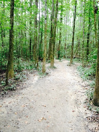 Nesbit Park trail
